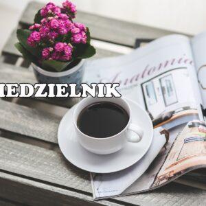 Niedzielnik | książka maja, organizacja, a podróżowanie, życie offline