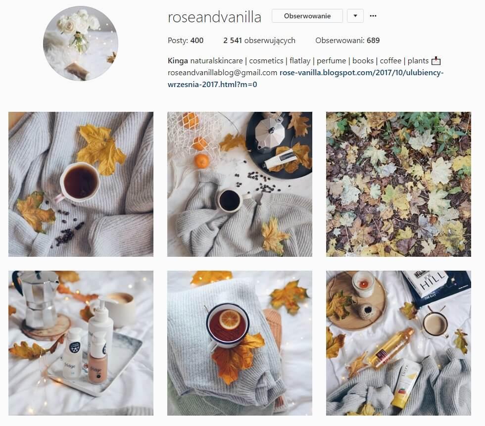 inspirujące konta na instagramie rose and wanilla