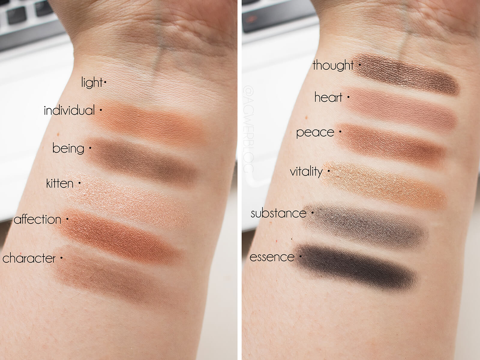 stila eyes are the window soul swatches